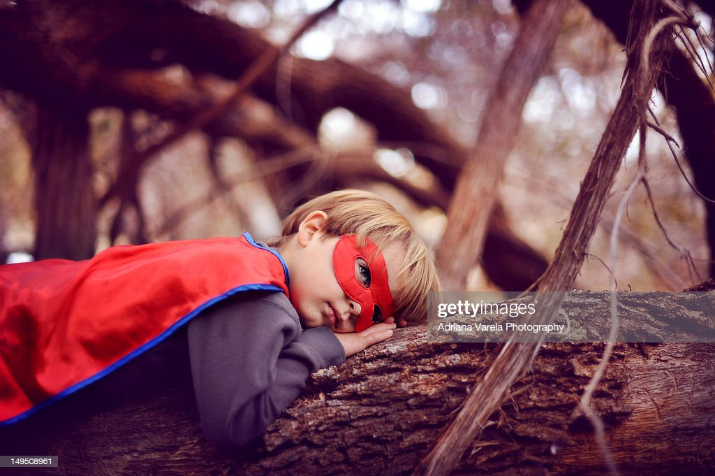 Boy lying on tree : Stock Photo