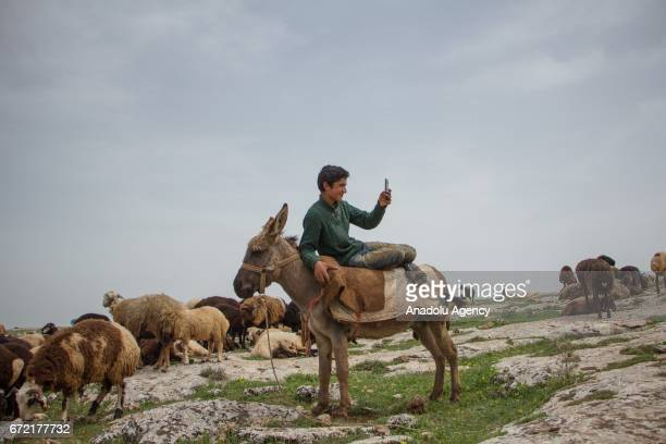 A boy on a donkey takes a photo with his phone on grassland in the Karacadag region of Siverek district in Sanliurfa Turkey on April 22 2017...