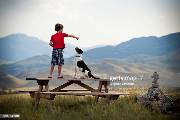 boy on picnic table training his dog