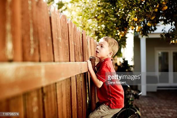 Boy peeking over fence