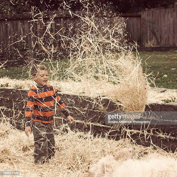 Boy Playing in Hay with Puppies