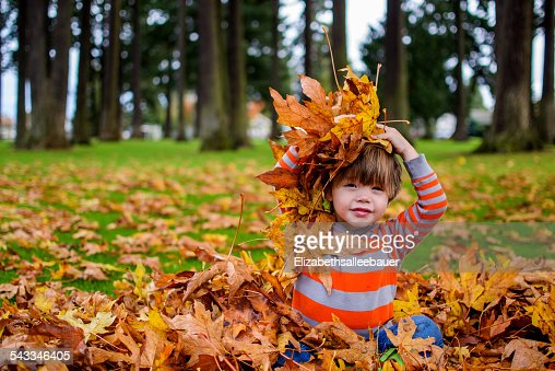 Boy (2-3) playing with autumnal leaves