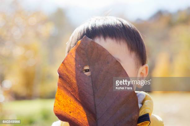 Boy playing with big leaf in the meadow in autumn