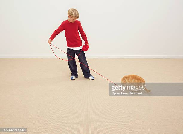 Boy (8-10) playing with cat and ball of string, indoors
