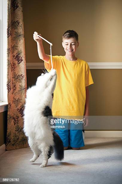 Boy Playing With His Cat With Kitty Toy