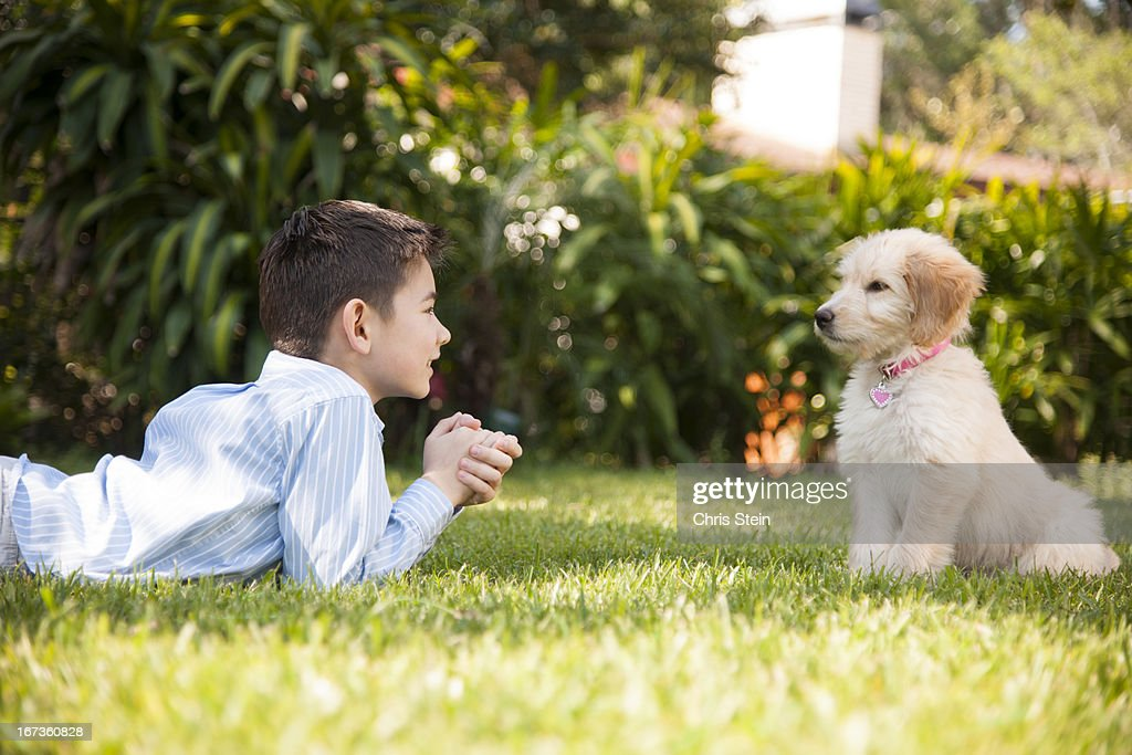 Boy playing with his puppy in the grass : Stock Photo