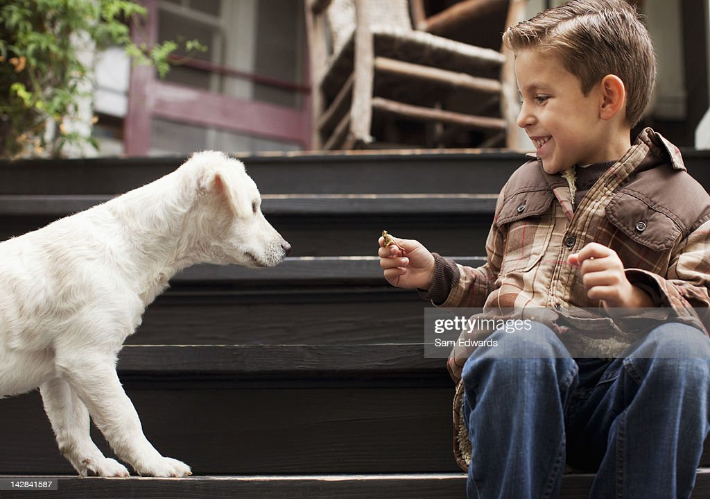 Boy playing with puppy on steps outdoors : Stock Photo