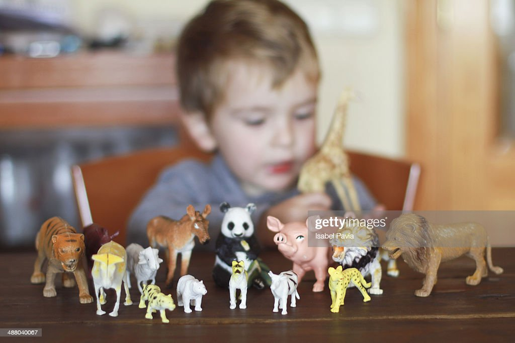 Boy playing with toy animals
