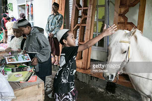 A boy plays with Luna a horse used as mobile library on May 5 2015 in Serang Village Purbalingga Central Java Indonesia Ridwan a horses caretaker...