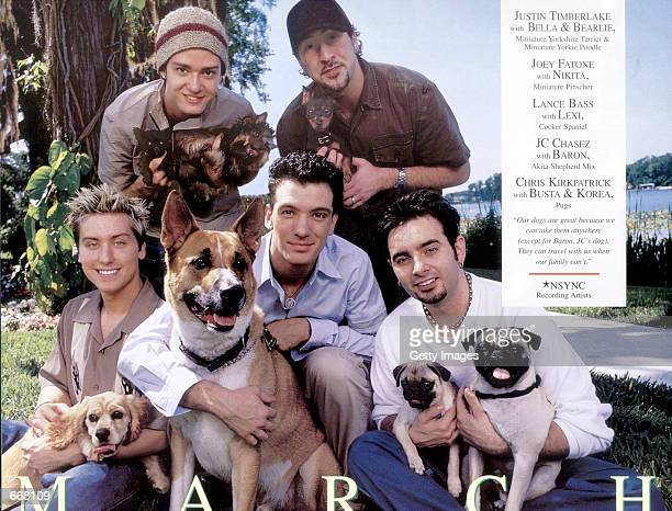Boy pop band ''N Sync and their pooches were one of the many celebrities to pose for the Purina 2001 Incredible Dogs Calendar sponsored by Tony La...
