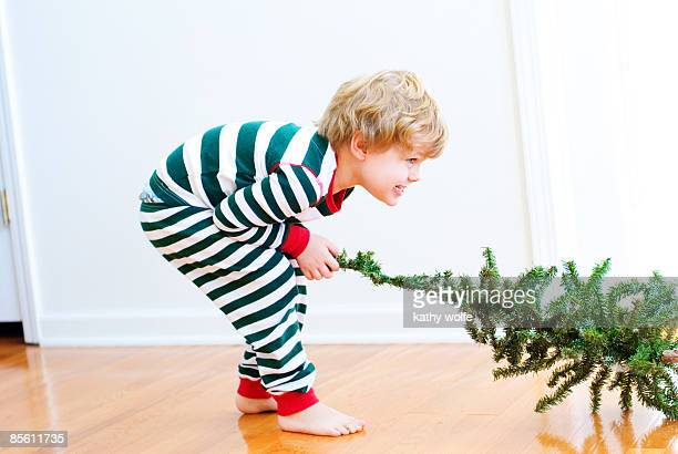 Boy pulling Christmas tree, side view