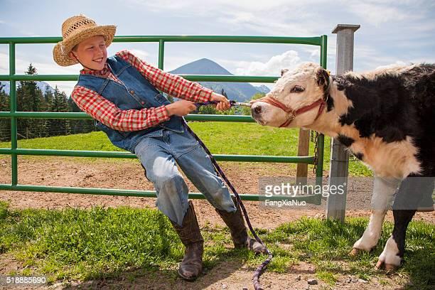 Boy pulling cow