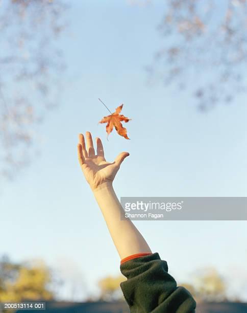 Boy reaching to catch falling leaf, close-up
