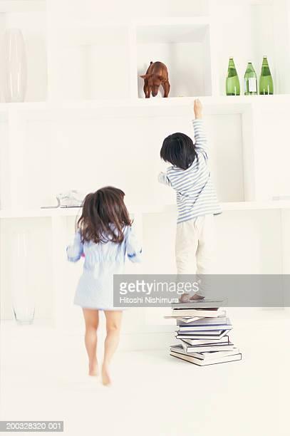 Boy (2-5) reaching up to dog on shelf, rear view
