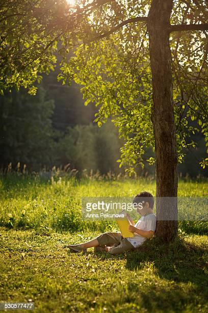 Boy reading a book under tree