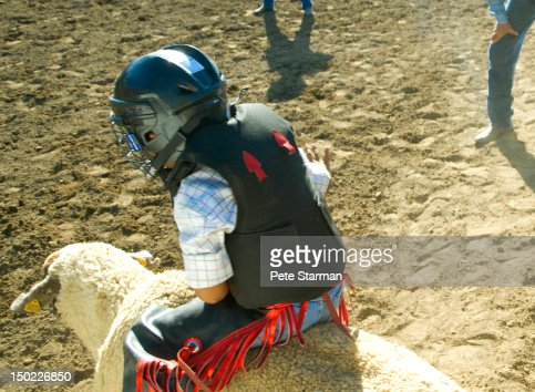 Boy riding a sheep at a Mutton Busting rodeo : Stockfoto