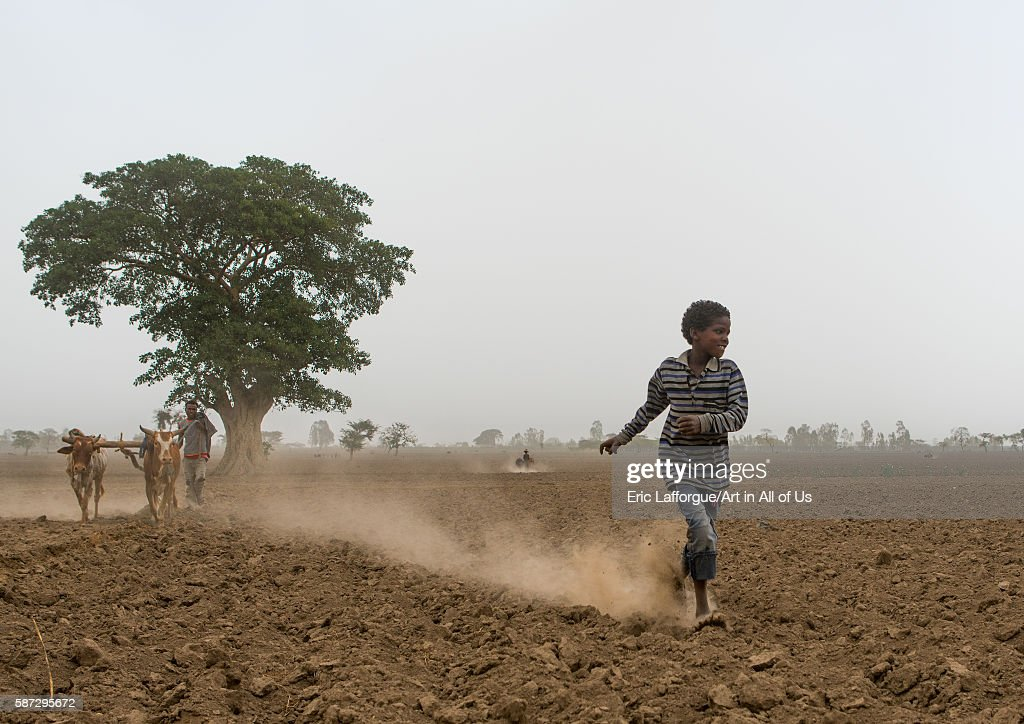 Boy running in a dry field kembata alaba kuito Ethiopia on March 22 2016 in Alaba Kuito Ethiopia