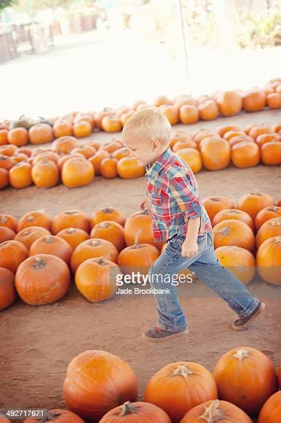 Boy running through pumpkins