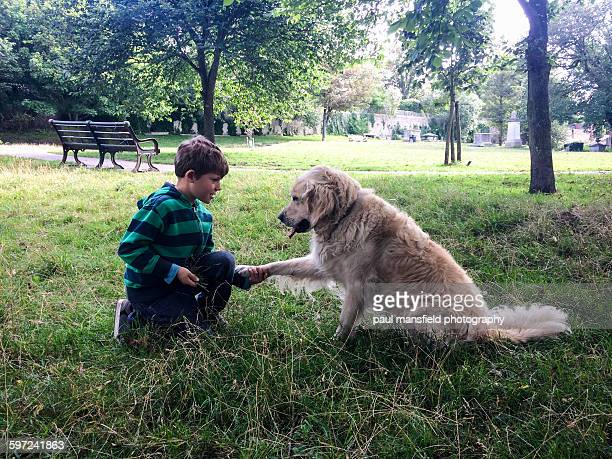 Boy shaking dogs paw