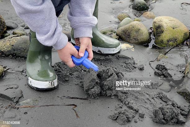 Boy shoveling sand at beach