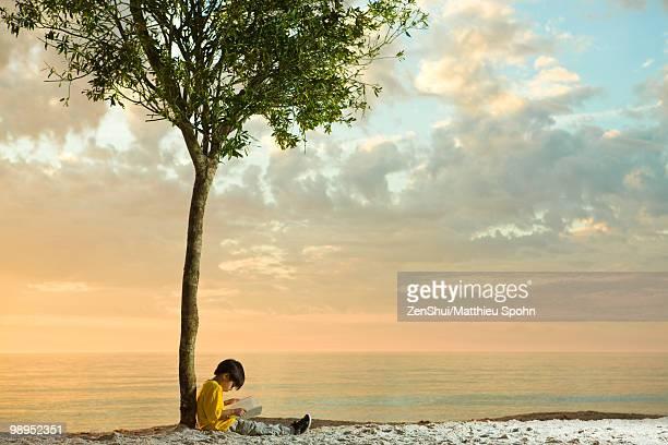Boy sitting beneath tree on beach reading book