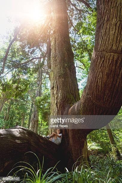 boy sitting in a centennial tree