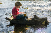 Boy sitting on dead wood at brook reading a book