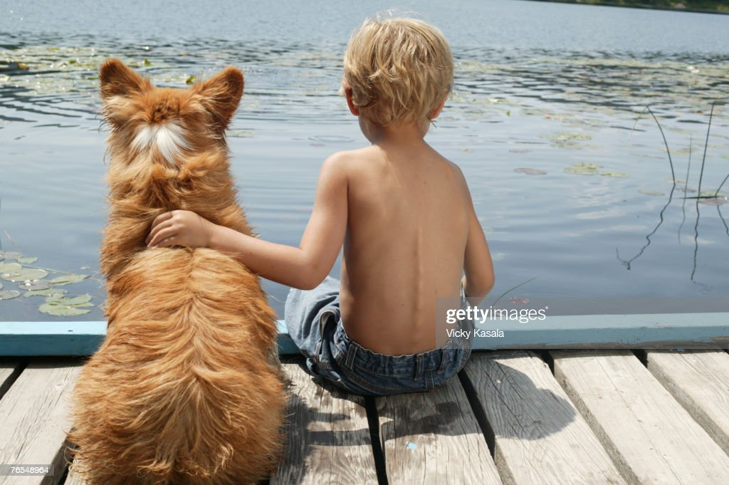 Boy (4-5) sitting on dock in lake with arm around dog, rear view : Stock Photo