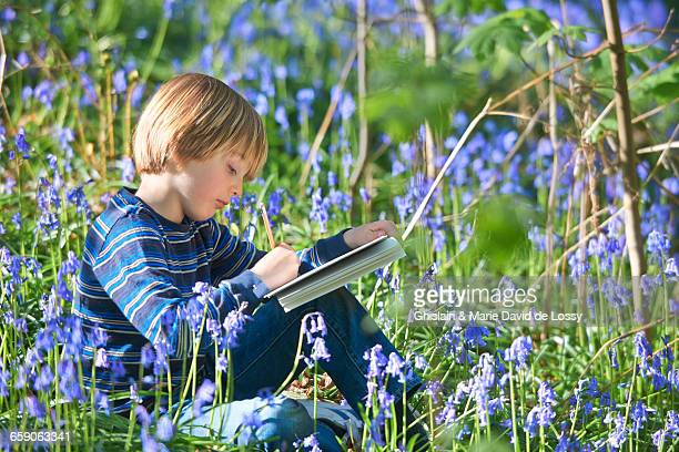 Boy sitting sketching in bluebell forest, Hallerbos, Brussels, Belgium