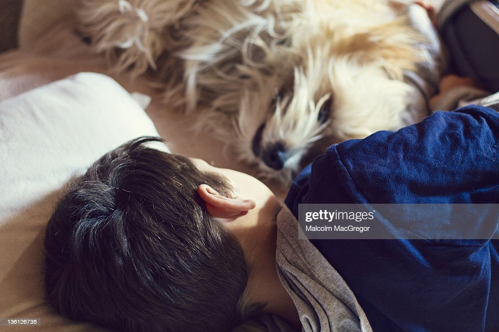 Boy sleeping on bed with his pet dog : Stock Photo