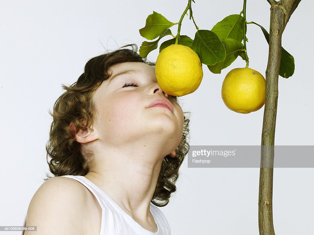Boy (6-7) smelling lemons, eyes closed, close-up : Stock Photo