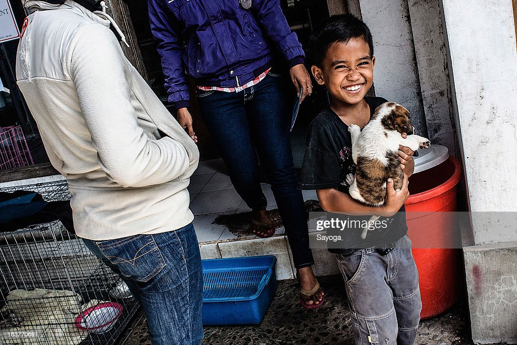 A boy smiles while holding a puppy that has been vaccinated with rabies vaccine at Bali Animal Welfare Association (BAWA) clinic on March 15, 2013 in Ubud, Bali, Indonesia. According to data from the Bali Animal Welfare Association (BAWA), the dog population in Bali is approximately 600,000. Many are reported to suffer from malnourishment and poor health.