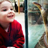 Boy smiling at snake