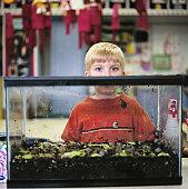 Boy (7-9) standing behind terrarium in classroom, portrait