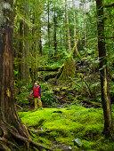 Rain forest, Hiking