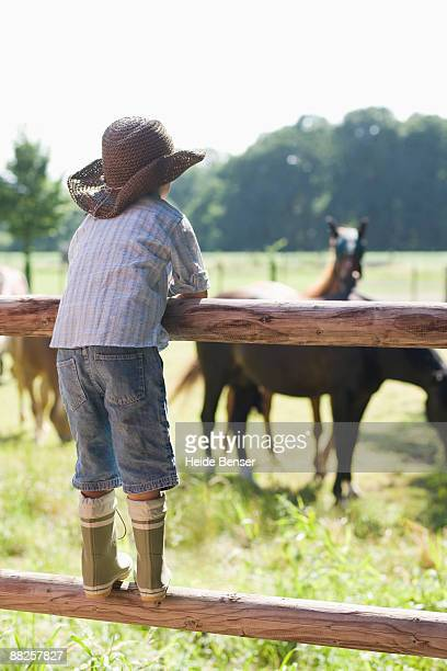 Boy Standing on a Fence
