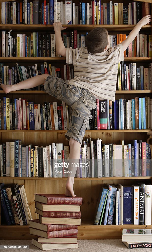 Boy (8-9) standing on book reaching for top book shelf, rear view : Stock Photo