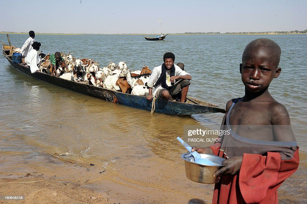 A boy stands next to shepherds arriving in a pirogue with their cattle on the banks of the Niger river, near Timbuktu, on February 4, 2013. French fighter jets pounded Islamist supply bases in northern Mali to flush the insurgents out of hiding as Paris pushed on February 4, 2013 for African troops to quickly take over the offensive. Dozens of French warplanes carried out massive air strikes on rebel training and logistics centres in the area around their last stronghold of Kidal over the weekend in the mountainous northeast of the landlocked county. AFP PHOTO / PASCAL GUYOT