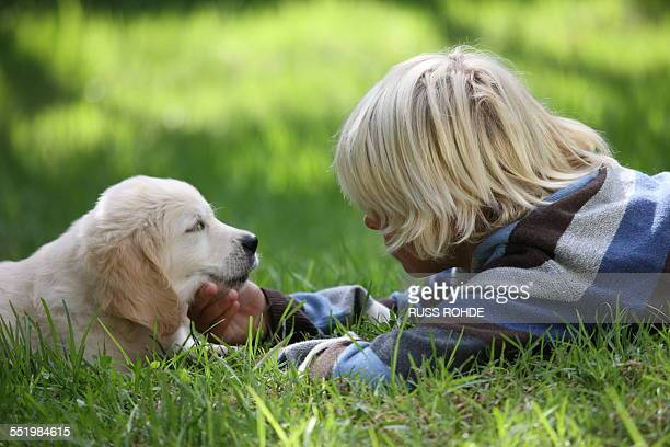 Boy stroking Golden Retriever puppy on grass