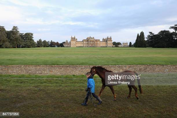 A boy takes his pony for a walk during day three of Blenheim Palace International Horse Trials on September 16 2017 in Woodstock England