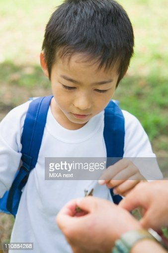 Boy Touching Insect : Stock-Foto