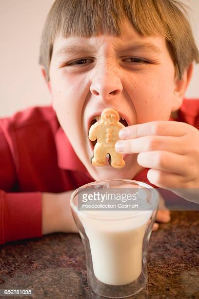 Boy trying to put a whole biscuit in his mouth, glass of milk