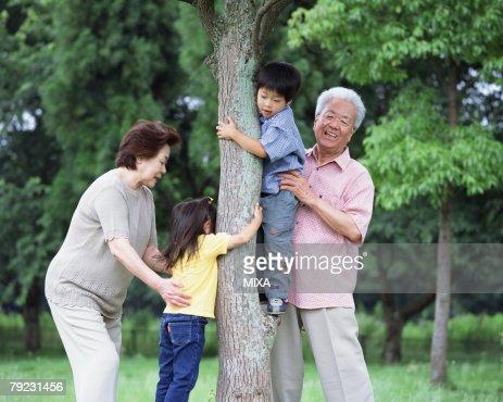 A boy tying to climb up a tree : Stock Photo