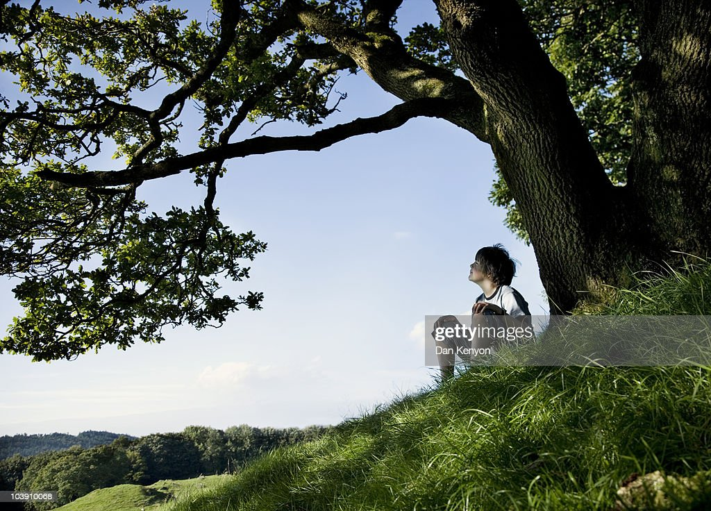 boy under tree in landscape : Stock Photo