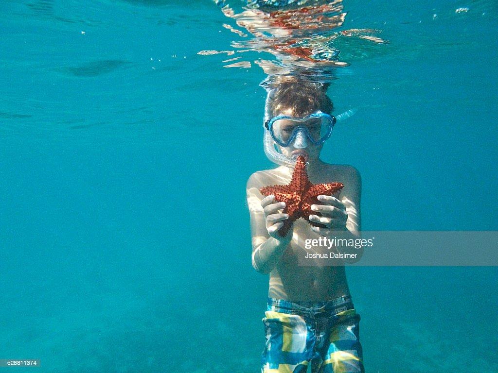 Boy underwater with Star fish : Stock Photo