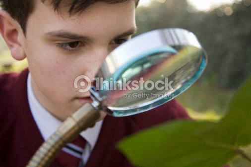 Boy using magnifying glass : Stock Photo