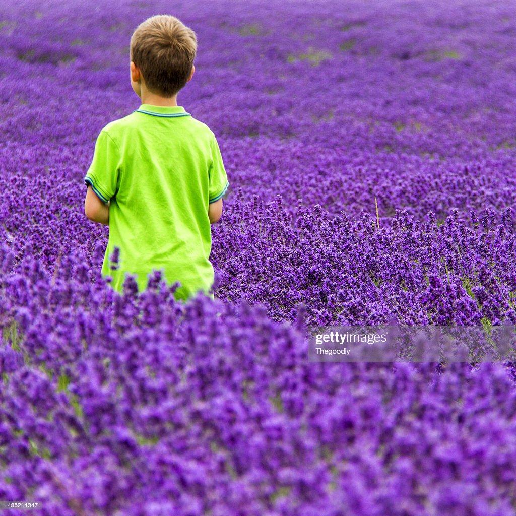 Boy walking in field