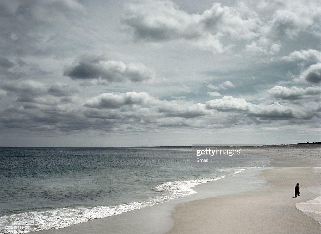 Boy (2-3) walking on beach (digital enhancement) : Stock Photo