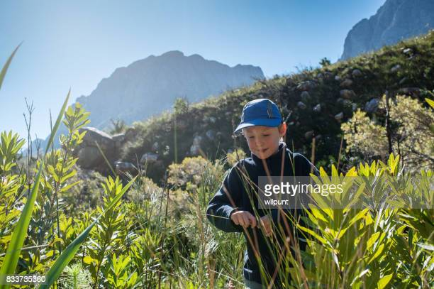 Boy walking through fynbos