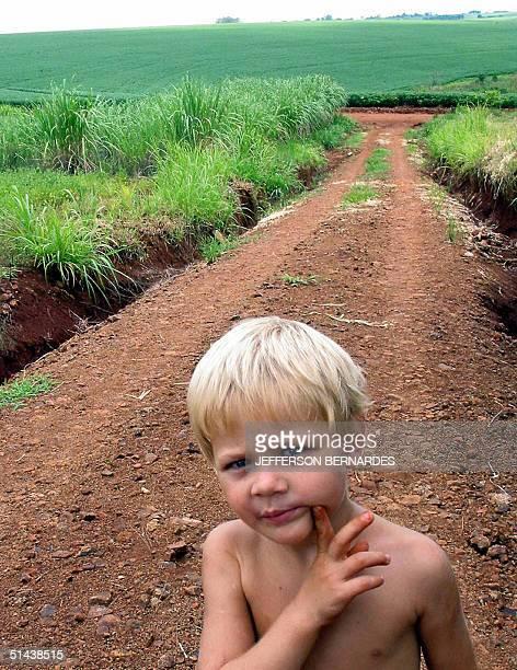 A boy walks along a plantation of genetically modified soy 04 September 2004 in Santa Maria 400 Km south of Porto Alegre Brazil The Brazilian Senate...